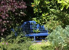 Empty bench half hidden by shrubs stock photography