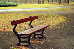 Empty bench in a raining day Royalty Free Stock Image