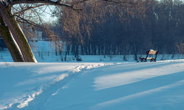 Empty Bench in Snowy Winter Park Royalty Free Stock Photography