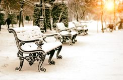 Bench in snowy winter park Royalty Free Stock Images