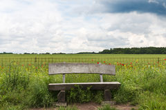 Empty bench before thunderstorm in Darmstad. Wood empty bench in a green field outside Darmstadt illuminated by the sunlight moments before a thunderstorm Stock Photos