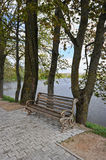 Empty bench by the water Stock Photography