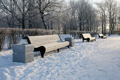 Empty bench in Winter Park Royalty Free Stock Images