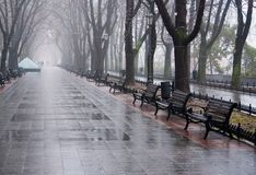 Empty benches along the empty valley in rain stock photo