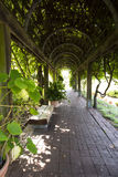 Empty benches in garden tunnel and shaped pergola Stock Photo