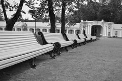 Empty benches in the park. Stock Images