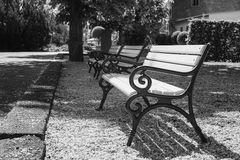 Empty Benches in the Park. Black and white Stock Photography