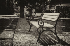 Empty Benches in the Park. Old photography Stock Photography