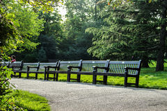 Empty benches Royalty Free Stock Photos