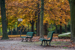 Empty Benches Royalty Free Stock Image