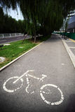 Empty bicycle lane. Color vertical shot of an empty bicycle lane in a park Royalty Free Stock Photography