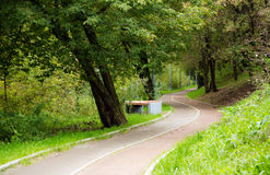 Empty bicycle lane. Curved bicycle lane in park Stock Images