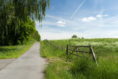Empty bicycle path Royalty Free Stock Image