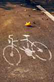 Empty bicycle street lane on autumn morning Royalty Free Stock Images