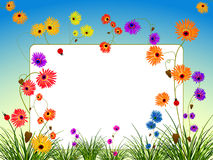 Empty billboard with flowers and grass Royalty Free Stock Photo