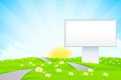 Empty Billboard in the Grass Royalty Free Stock Image
