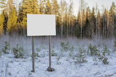 Empty billboard in winter forest Royalty Free Stock Photos