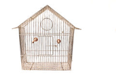 Empty bird cage. Isolated on white Stock Images