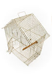 Empty Bird Cage with opened door Royalty Free Stock Photography