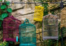 Free Empty Bird Cages Hanging On A Bar, Pet Trade In Asia, Animal Store Background Royalty Free Stock Photo - 164380585