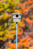 Empty bird house. Bird house in front of brilliant fall foliage stock photography