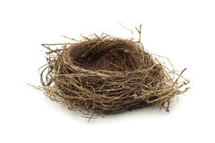 Empty bird nest. Real empty bird nest on white Royalty Free Stock Images