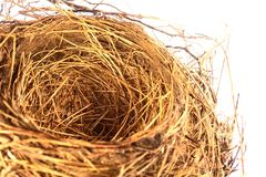 Empty Bird Nest. Isolated on a white background Royalty Free Stock Photo