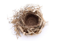 Empty bird nest Royalty Free Stock Photos