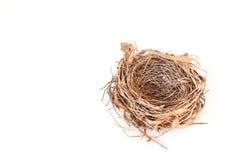 Empty bird nest isolated on white Stock Photos