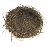 Empty bird nest. Real empty bird nest on white Stock Photos