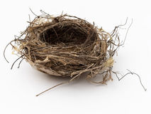 Empty bird nest. On white background Stock Photo