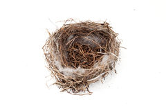Empty bird nest. On a white background Royalty Free Stock Images