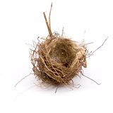 Empty bird's nest. On a white background Royalty Free Stock Image