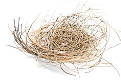 Empty bird's nest on a white background Royalty Free Stock Image