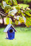 Empty birdhouse waits patiently for some feathery tenants to move in stock image