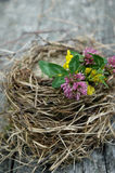 Empty birdnest. With flowers on table Royalty Free Stock Image
