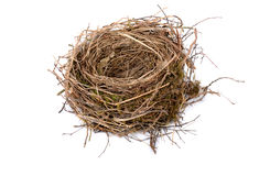 Empty birds nest Stock Photography