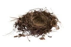 Empty Birds Nest Isolated On White Background Stock Photo