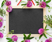 Empty blackboard, floral border from flowers and herbs. Royalty Free Stock Image