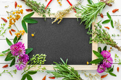 Empty blackboard and healing herbs. Top view. Stock Photo