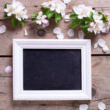 Empty blackboard  and tender apple tree flowers on aged vintage Royalty Free Stock Image