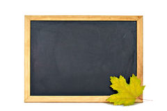 Empty blackboard and yellow maple leaf Royalty Free Stock Photos