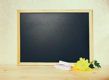 Empty blank school black board with white chalks and chrysanthem Royalty Free Stock Photos