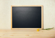 Empty blank school new black board with tulip on table, close up Stock Photography