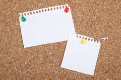 Empty Blank Two White Note Papers On Bulletin Board Royalty Free Stock Image