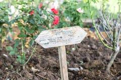 Empty or blank wooden plaque put in rose garden Stock Photos