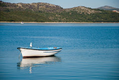 Empty boat with seagull with shore and hills in the background Royalty Free Stock Photo