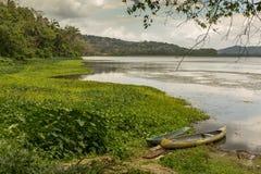 Empty Boats at River's Edge - Gamboa, Panama Stock Image