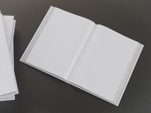 Empty book mockup template Royalty Free Stock Image