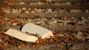 Empty Book on the Railroad Tracks Stock Images